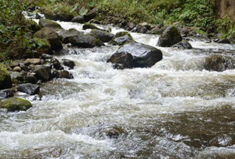 Río Combeima