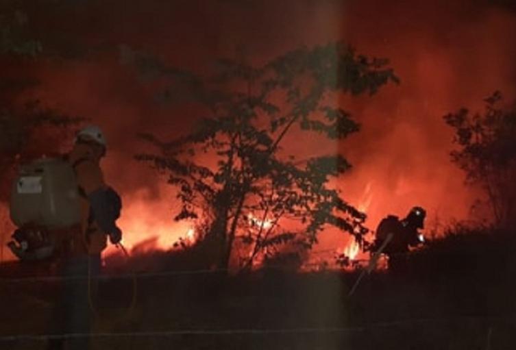 La emergencia ha consumido aproximadamente mil hectáreas