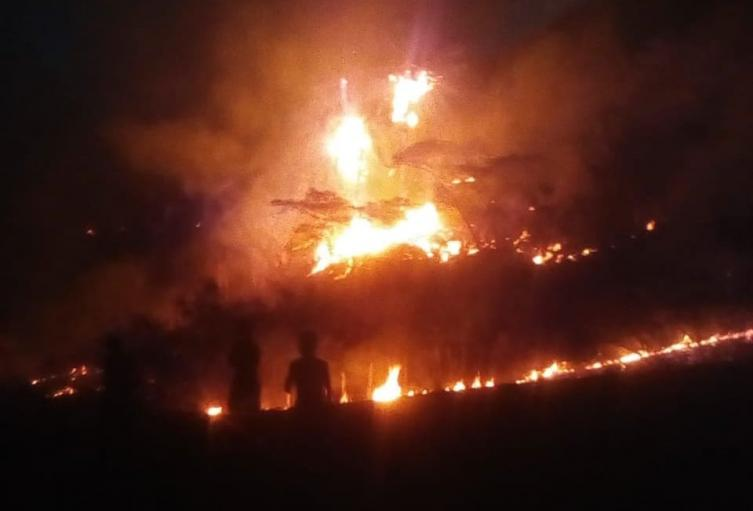 Incendio forestal en Alvarado ha consumido más de 500 hectáreas