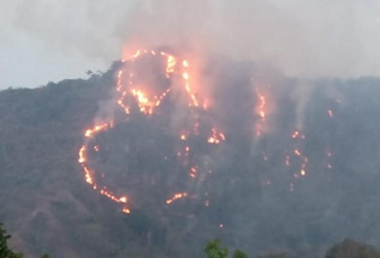 A pesar de las lluvias se presentan incendios forestales