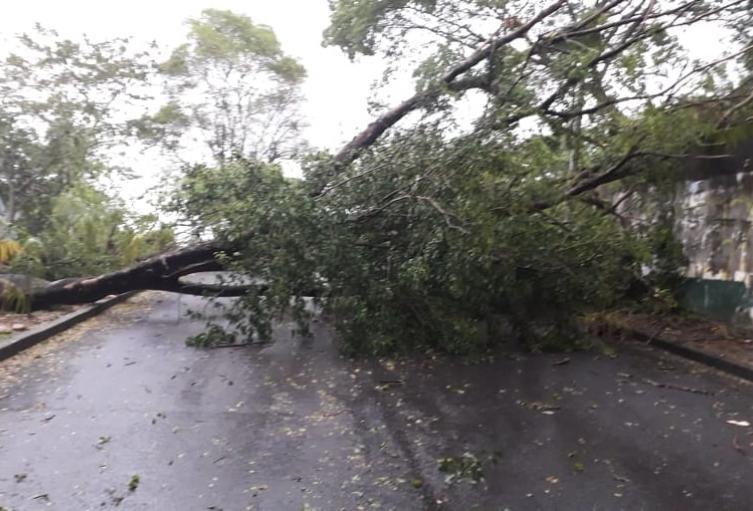 27 de los 47 municipios del Tolima se encuentran en alerta Amarilla por amenaza de deslizamiento