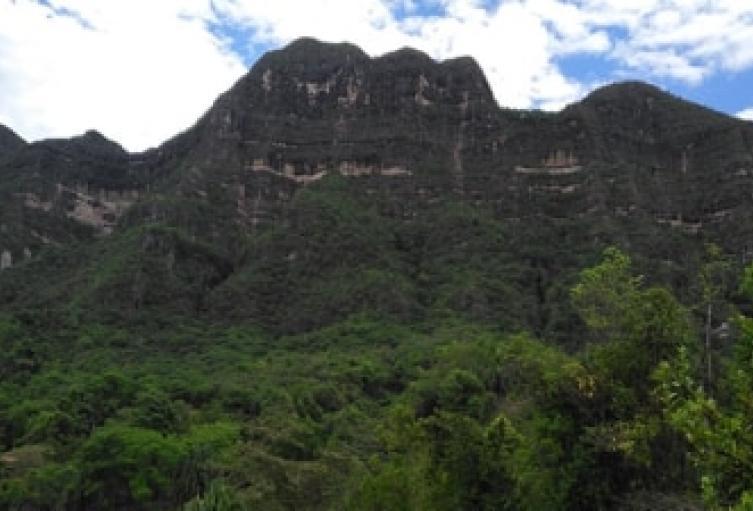 Durante siete años de gestión Cortolima hizo la compra de 6.800 hectáreas