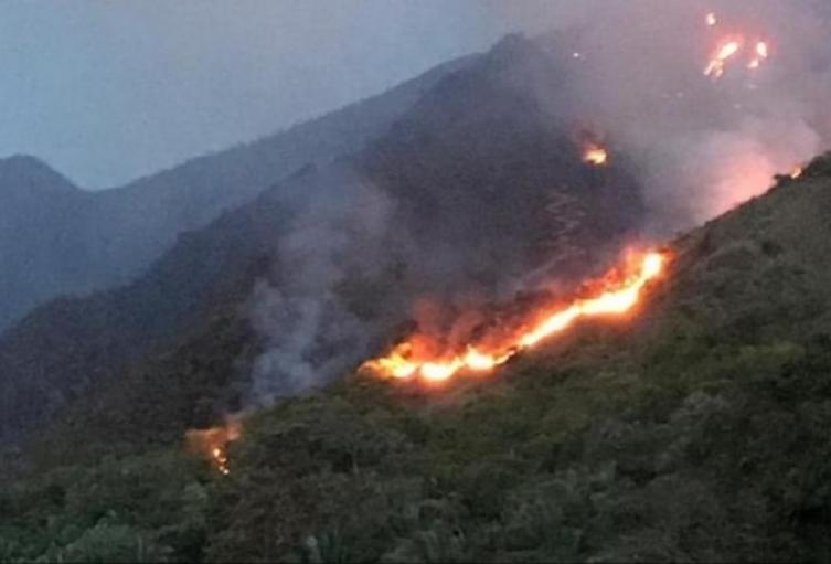 Incendios forestales en el Tolima