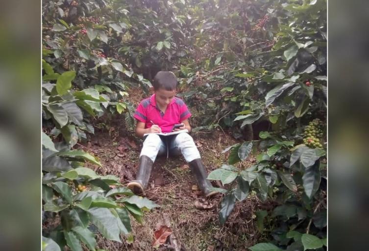 Estudiantes sector rural del Tolima