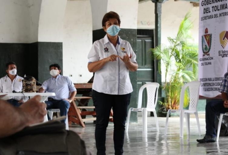Proyectos productivos en aras de renovar todo lo relacionado con la economía en medio de la pandemia Covid-19