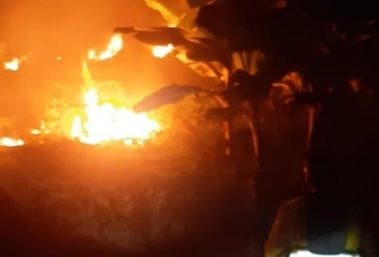 Incendios forestales en el Tolima han consumido 136 hectáreas
