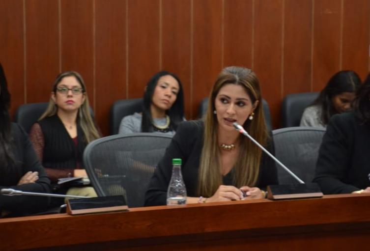 La presente ley tiene como objeto otorgar a la mujer embarazada herramientas para la protección de su derecho a la estabilidad laboral