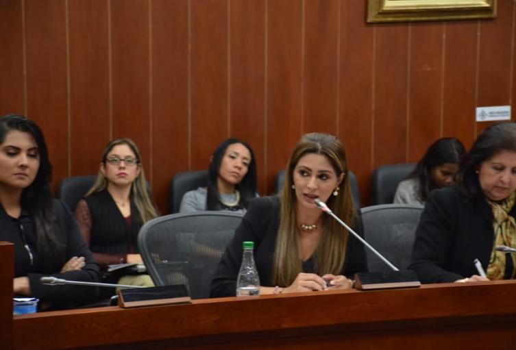 Se busca garantizar recursos para la formación, financiación y participación efectiva de la mujer en los procesos políticos