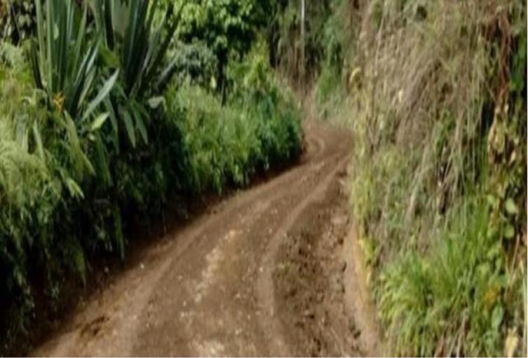 Vías rurales colapsadas