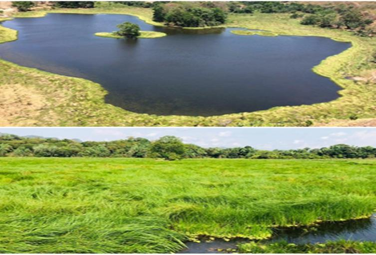 Laguna El Silencio
