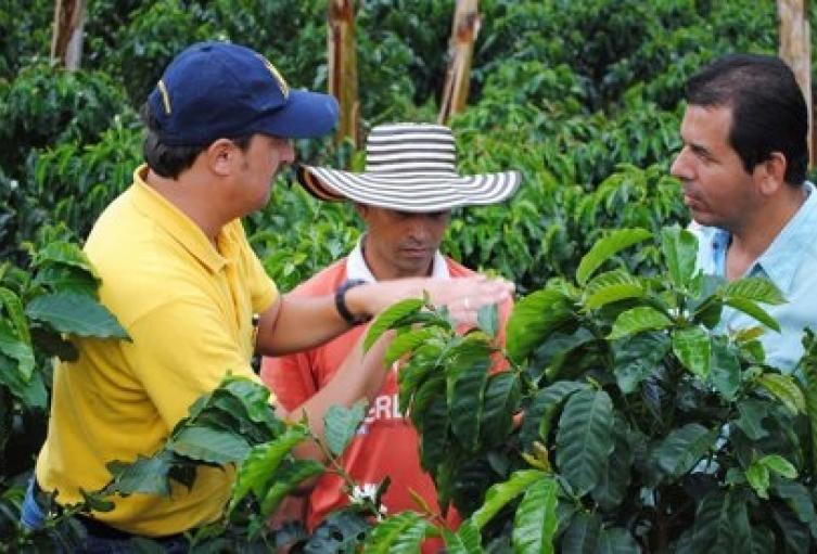 121MinAgricultura.jpg