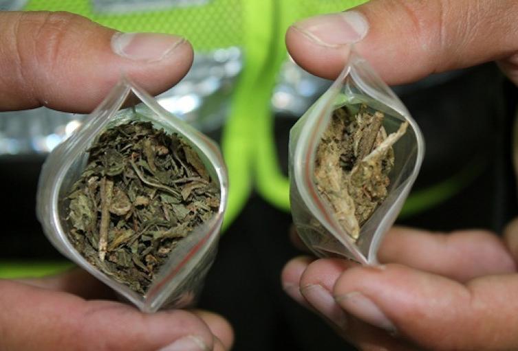 marihuana-incautada.jpg