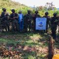 Reforestación en Ibagué