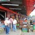 En el Huila 1.700 agricultores fueron  inscritos en el PAE