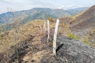 Se expusieron las experiencias durante la conflagración que arrasó con miles de hectáreas que reportaron las autoridades