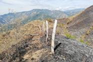 La conflagración habría consumido aproximadamente 2 mil hectáreas de bosque y pastizales