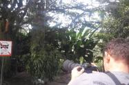 Turismo y avistamiento de aves en Manizales