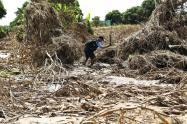 Sequía en el Tolima