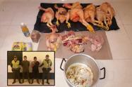 Ladrones de gallinas