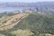 Bosque Galilea