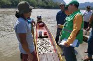 Control de pesca en el Tolima