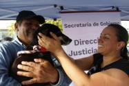Elegidos los miembros de la junta de Protección Animal