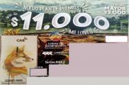 Imagen de ilustración de Lotería de Cundinamarca.