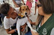 Niño dio su vida para salvar a su perro en voraz incendio