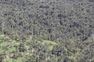 El ente de control ratificó su petición de acciones inmediatas de seguridad en zonas protegidas y ambientales