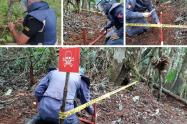 Proceso de desminado en el Tolima