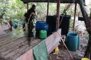 Destruyen siete laboratorios de coca