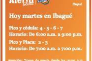 Pico y cédula Martes en Ibagué