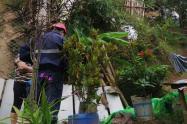 Bomberos de Ibagué reportaron fallecimiento de un hombre que cayó a un precipicio en zona rural de la ciudad