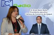 Presidente ejecutivo de la Cámara de Comercio de Ibagué