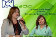 Diana Lucia Reyes Gutierrez