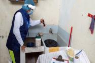 dengue Ibagué