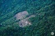 Deforestación en la Amazonia colombiana.
