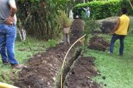 Proyectos de gasificación del Tolima