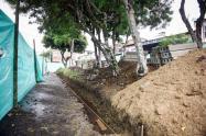 Mantenimiento de parques Ibagué