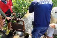Encontraron el cuerpo del hombre ahogado en el canal de riego de Usocoello en el Guamo