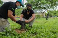 Estrategia Planta tu futuro, mejorará  medio ambiente en Neiva