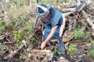 Destruyeron 6 minas antipersonales halladas en Planadas - Tolima