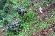 Erradicación de matas de coca en el sur del Tolima