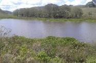 Humedal Huila