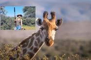 Mujer cazadora mató jirafa en Sudáfrica