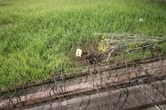 Lanzaron granada de fragmentación al alojamiento de guardianes del Inpec en la cárcel de Picaleña