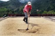 Duque-presentó-plan-de-ayudas-por-255-mil-millones-para-el-sector-cafetero.jpg