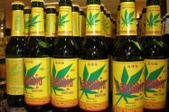 Producción-de-cerveza-a-base-de-cannabis-está-prohibida-en-Colombia..jpg