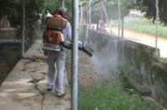 denguetolima19.jpg