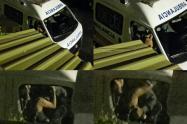denuncian-espectaculo-en-ibague-a-bordo-de-una-ambulancia.jpg